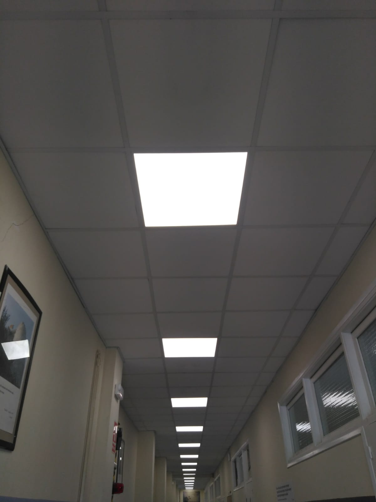Iluminació LED